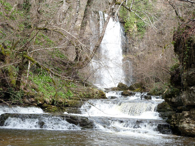 The Beech forest and Pisas Waterfall
